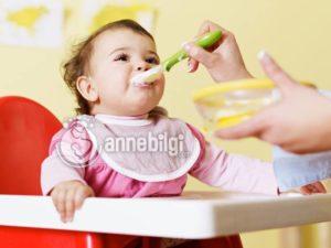 6 aylık bebek için beslenme listesi