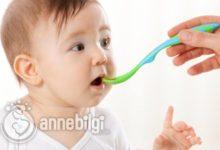 Photo of Bebeklerde Katı Gıdaya Ne Zaman Geçilmeli