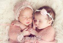 ikiz bebeğin olması kime bağlı