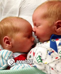 ikiz bebek ortalama doğum kiloları